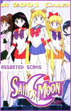 Sailor Moon Assorted Downloads