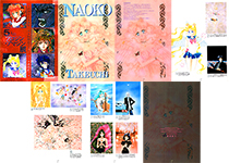 5 Amateurs Turned Professional Interview Translation: Naoko Takeuchi