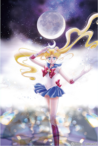 Sailor Moon Kanzenban Volume 1