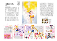 Naoko Takeuchi and Fumio Osano Interview in ROLa magazine January 2014 Issue